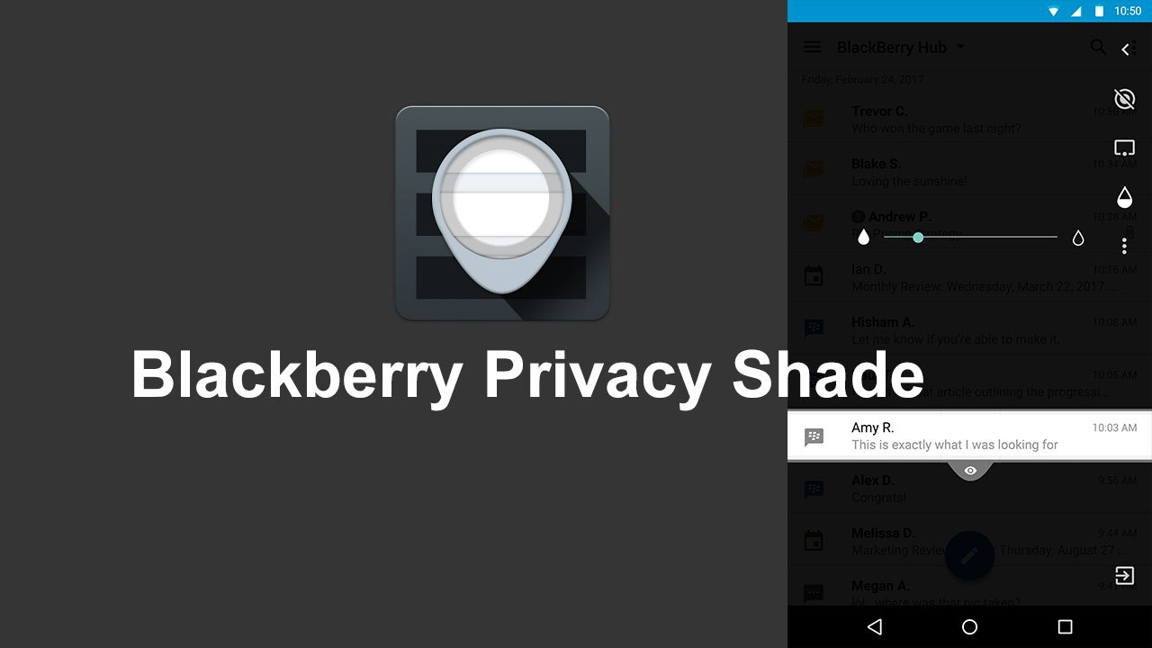 blackberry-privacy-shade.jpg
