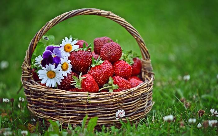 strawberry-wallpaper-(103)-by-twalls.jpg