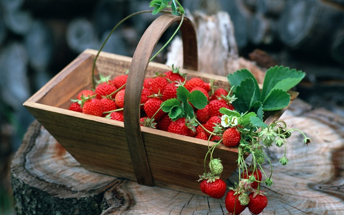 strawberry-wallpaper-(25)-by-twalls.jpg