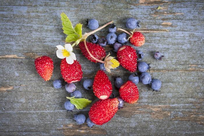 strawberry-wallpaper-(76)-by-twalls.jpg