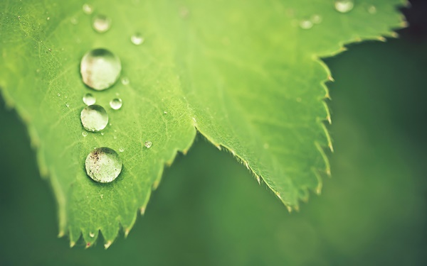 water-drop-wallpaper-(60)__by___twalls.jpg